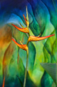 Tropical Rainforest Digital Art Prints - Angel in Paradise Print by Michelle Laylor