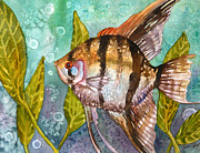 Angelfish Paintings - Angelfish by Anne Gifford
