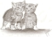 Cuddly Drawings Prints - Angelic Kittens Print by Gayatri Ketharaman
