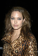 Leopard Print Framed Prints - Angelina Jolie At Sharkspeare In The Framed Print by Everett