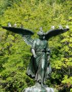 Anna  Duyunova - Angels of New York