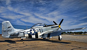 North American P51 Mustang Prints - Angels Playmate  Print by Steven Richardson