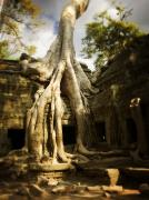 Cambodia Photos - Angkor Wat Cambodia by Huy Lam