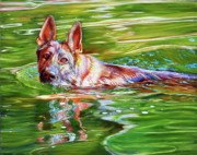 German Sheppard Prints - Angus Print by Kelly McNeil