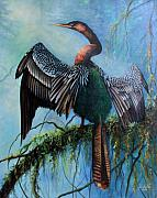 Anhinga Paintings - Anhinga by Gail Salituri
