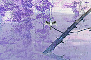 Orchids Digital Art - Anhinga Japanese Style by Suzanne Gaff