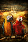 Parrot Framed Prints - Animal - Parrot - Parrot-dise Framed Print by Mike Savad