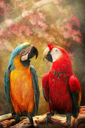 Parrot Framed Prints - Animal - Parrot - Well always have parrots Framed Print by Mike Savad