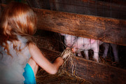 Pet Pig Prints - Animal - Pig - Feeding piglets  Print by Mike Savad