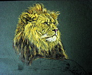 Jungle Pastels Originals - Animal 21- Lion by Mohd Raza-ul Karim
