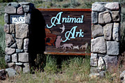 Ark Prints - Animal Ark Sign Reno Nevada Print by LeeAnn McLaneGoetz McLaneGoetzStudioLLCcom