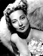 Sothern Flower Photos - Ann Sothern, Publicity Shot by Everett