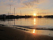 Sunrises Pyrography Prints - Annapolis Sunrise Print by Valia Bradshaw