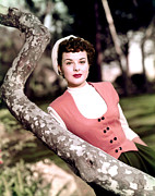 1950s Movies Acrylic Prints - Anne Of The Indies, Jean Peters, 1951 Acrylic Print by Everett