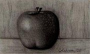 Apple Art Drawings Posters - Another Apple Poster by Shannon Redmon
