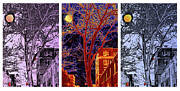 New York City Digital Art Metal Prints - Another Brooklyn Night tryptych Metal Print by Madeline Ellis