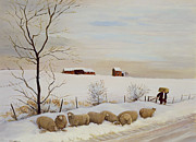 Sheep Prints - Another Hard Winter Print by Margaret Loxton