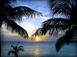 Minchak Framed Prints - Another Key West Sunset Framed Print by Joan  Minchak