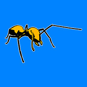 Pop Art Art - Ant Graphic  by Pixel  Chimp