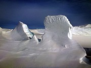 Research Photo Originals - Antarctic Landscape 145 by David Barringhaus