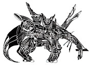 Chair Drawings - Anteater Throne by Power City Images