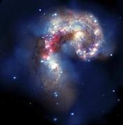 Antennae Galaxies, Composite Image Print by Nasa