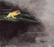 Sri Lankan Artist Paintings - Anthropogenic Shrub-frog by Tharanga Herath