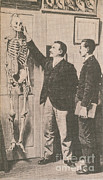 Identification System Prints - Anthropometry Print by Photo Researchers