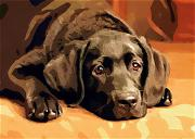 Labrador Retriever Digital Art - Anticipation by Robert Smerecki