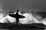 Surfer Metal Prints - Anticipation Metal Print by Sheila Smart