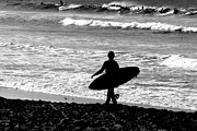 Surf Silhouette Metal Prints - Anticipation Metal Print by Steve Parr