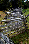 Split Rail Fence Metal Prints - Antietam Fenceline Metal Print by Judi Quelland