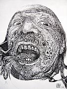 Otto Rapp Drawings Framed Prints - Antipods Screamer Framed Print by Otto Rapp