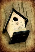 Textured Bird Posters - Antique Bird House Poster by Sophie Vigneault