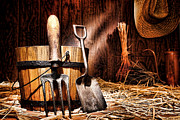 Steel Photo Posters - Antique Gardening Tools Poster by Olivier Le Queinec