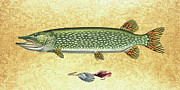 Lure Painting Posters - Antique Lure and Pike Poster by JQ Licensing