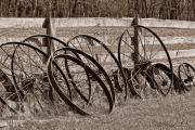 Hay Wagon Prints - Antique Wagon Wheels I Print by Tom Mc Nemar