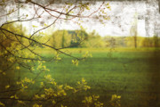 Artistic Digital Art Posters - Antiqued grunge landscape Poster by Sandra Cunningham