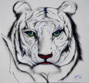 Tiger Paintings - Antonio by Adele Moscaritolo
