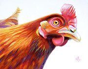 Yellow Beak Paintings - Anyone Home? Curious Hen by Denise Laurent