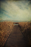 Textured Landscapes Digital Art - Anywhere You Go by Laurie Search