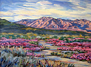 Verbena Paintings - Anza-Borrego Desert at Sunset by Robert Gerdes