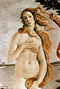 Aphrodite Paintings - Aphrodite/venus by Granger