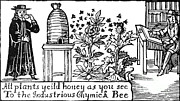 Beekeeping Posters - Apiculture, Beekeeping, 18 Century Poster by Science Source