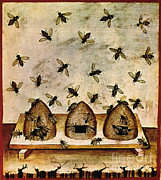 Beekeeping Posters - Apiculture, Beekeeping,14th Century Poster by Science Source