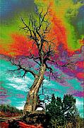 Apocalypse Framed Prints - Apocalypse Tree Framed Print by Richard Henne