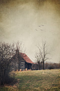 Tin Roof Prints - Appalachian Cabin Print by Stephanie Frey
