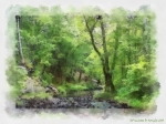 Paulette Wright Digital Art Prints - Appalachian Creek Print by Paulette Wright