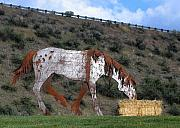 Lewiston Prints - Appaloosa Sculpture Print by Farol Tomson
