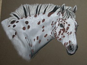 Indian Pastels Prints - Appaloosa  Print by Sherri Strikwerda